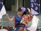 よさ研ニュースレター202号 YOSAKOIかぬまフェスティバル(栃木県鹿沼市)