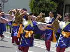よさ研ニュースレター220号 常陸国YOSAKOI祭り(茨城県久慈郡大子町)