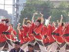 よさ研ニュースレター222号 スカイ・ビア&YOSAKOI祭り  千歳YOSAKOIトーナメント(北海道千歳市)
