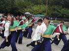 よさ研ニュースレター230号 ザ・よさこい!大江戸ソーラン祭り(東京都江東区)